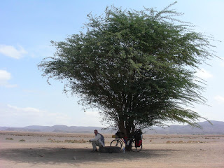 05 Break in the Little Shade that Djibouti has to Offer
