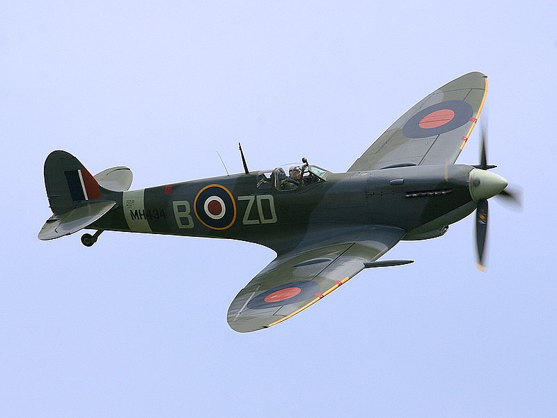 800px Ray Flying Legends 2005 1