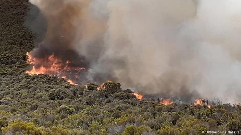 kilimanjaro wildfire