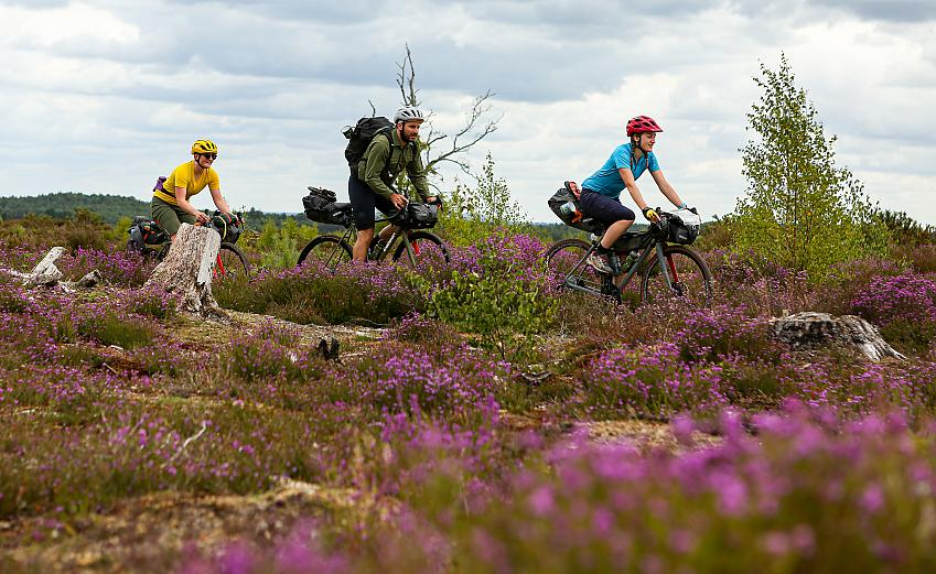 Pannier King Alfreds Way Route Cycling UK 3 Frensham Common Ponds